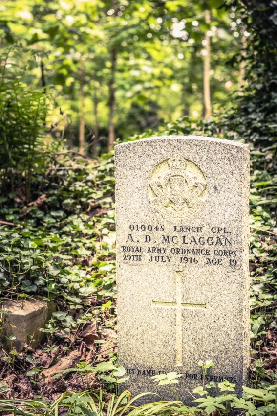 mclaggan